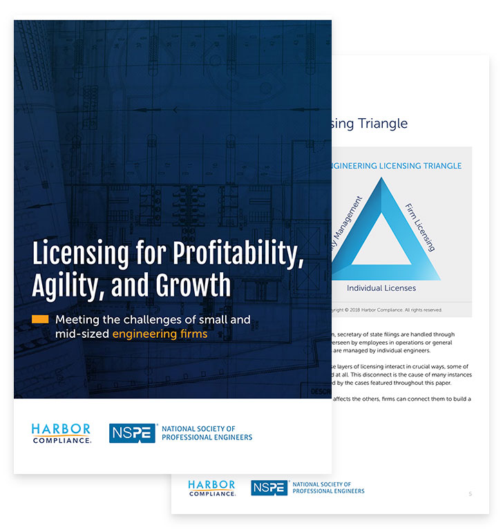 Licensing for Profitability, Agility, and Growth white paper