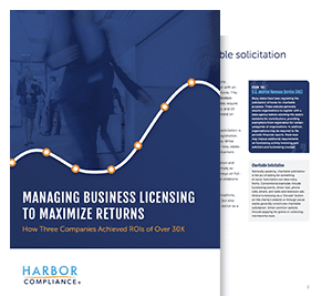 Our Managing Business Licensing To Maximize Returns white paper