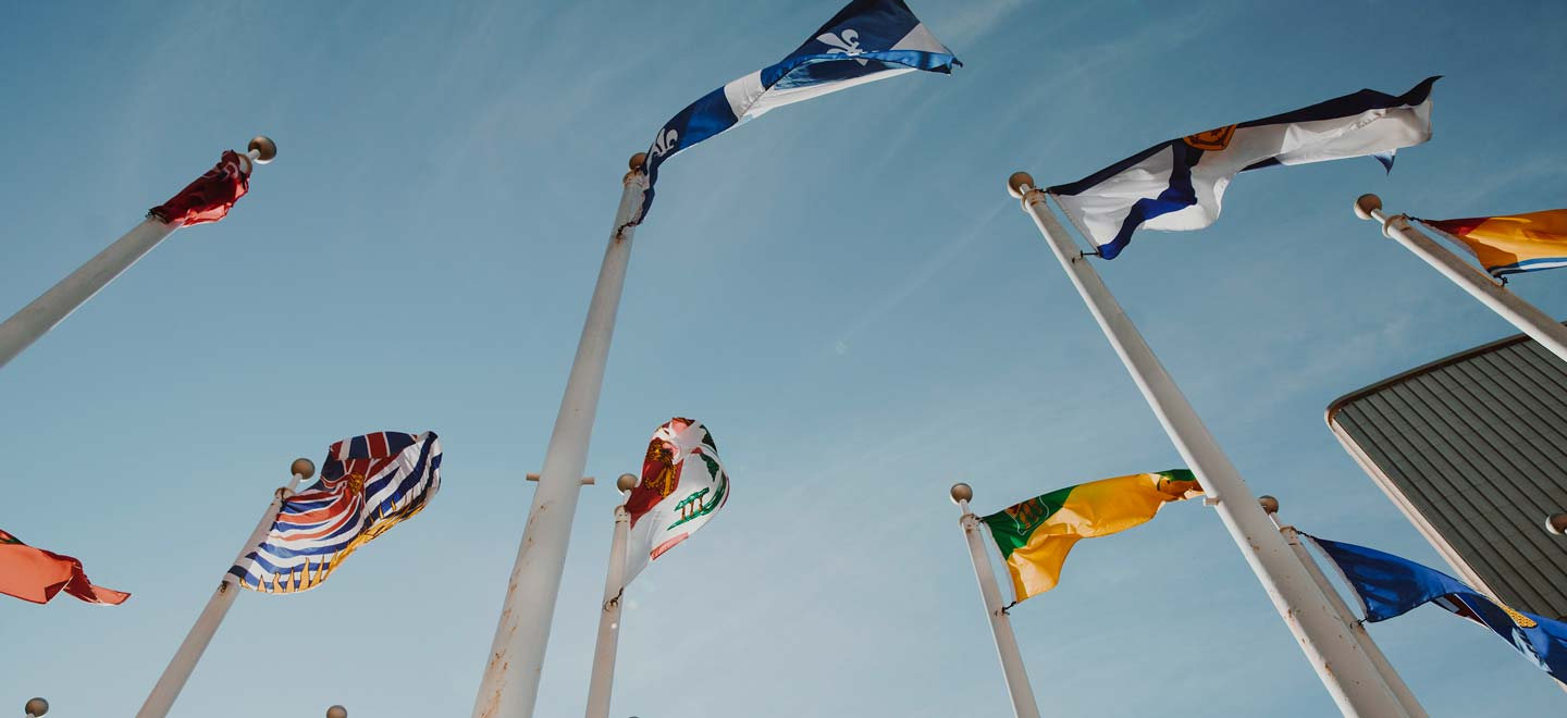 A group of raised international flags